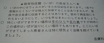 0902109.jpg